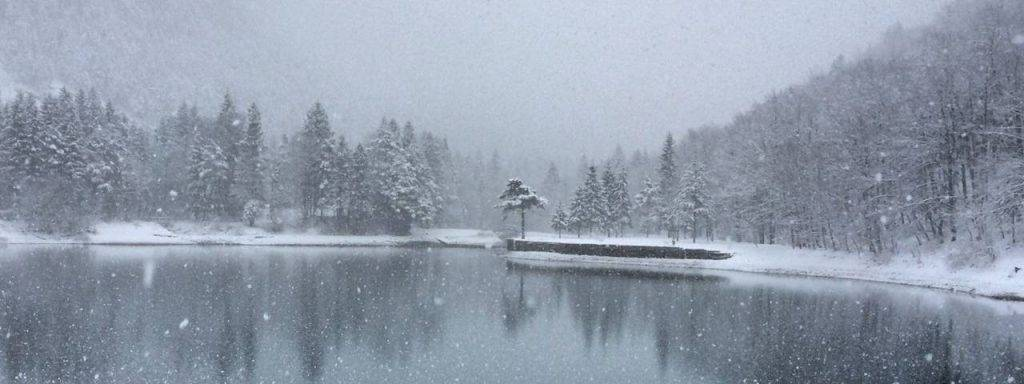 White-Snowy-Lake-and-Trees-1280x480-1-1024x384-1